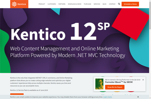 Kentico .NET based cms